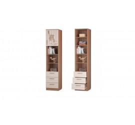 Шкаф для книг с 3-мя ящиками и дверкой Вояж