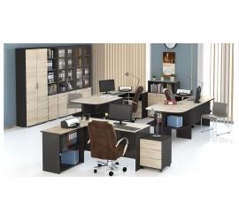 Набор офисной мебели Успех-2 ГН-184.005